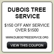 DuboisCoupon150_Small
